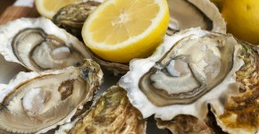appetizing French oysters with lemon delicious really delicious gourmet food