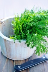fresh dill in a wooden bowl, dill on the table