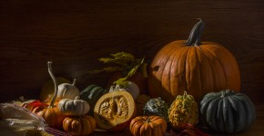 Autumn Still Life with Pumpkins,Squash, and Gourds