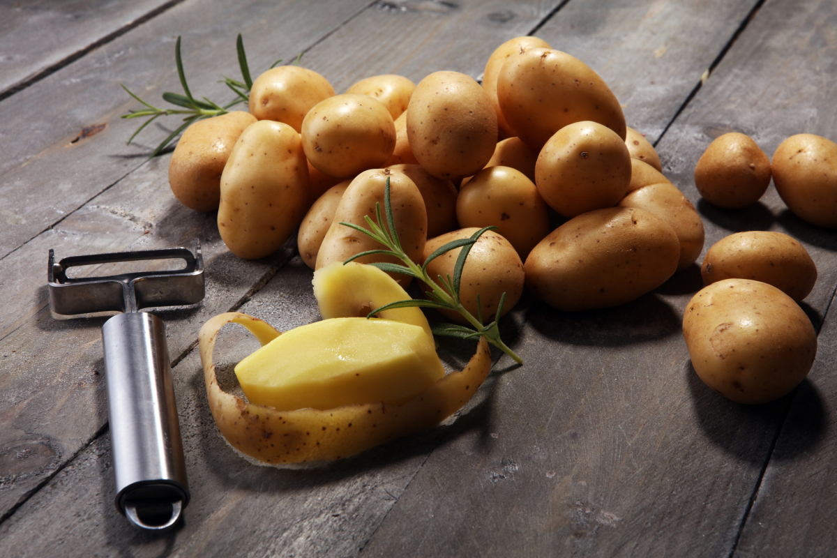 Pile of potatoes lying on wooden boards. Fresh potato